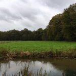 Locatie Toorn van Thunaer boksloot naar bos