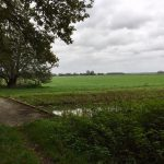 Locatie Toorn van Thunaer brug en landerijen