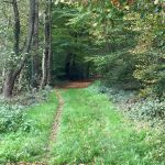 Locatie Toorn van Thunaer pad