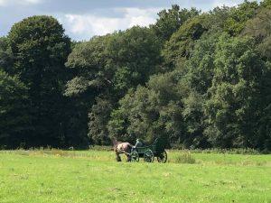 paard en wagen landgoed De Klencke
